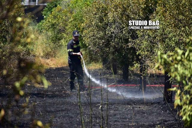 Πυρκαγιά στην Ασίνη Αργολίδας