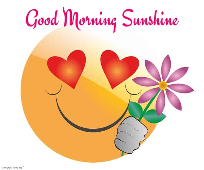 lovely emoji good morning sunshine