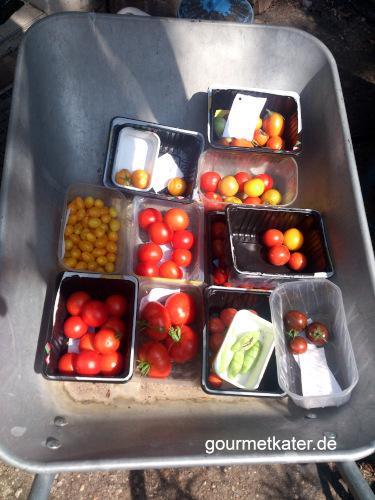 Marktticker: Alles Tomate!
