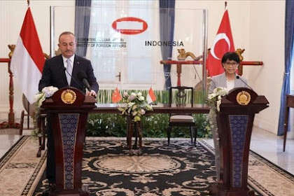 Indonesia dan Turki sepakat kerja sama selesaikan persoalan dunia Islam