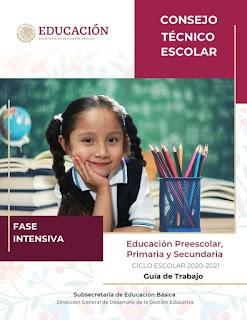 Consejo Técnico Escolar. Fase Intensiva. Ciclo Escolar 2020-2021. Educación Preescolar, Primaria y Secundaria