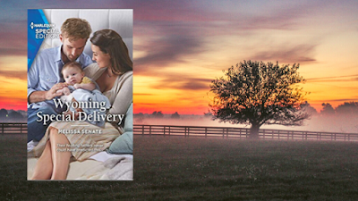 Wyoming Special Delivery ~ Melissa Senate