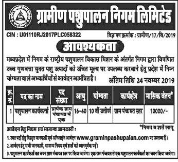 Gramin Pashupalan Recruitment 2019, Rural Animal Husbandry Corporation Ltd. Recruitment, Gramin Pashupalan Recruitment 2019-20, Gramin Pashupalan Bharti, Gramin Pashupalan Bharti 2019, Gramin Pashupalan Bharti Madhya Pradesh, Gramin Pashupalan madhya pradesh.