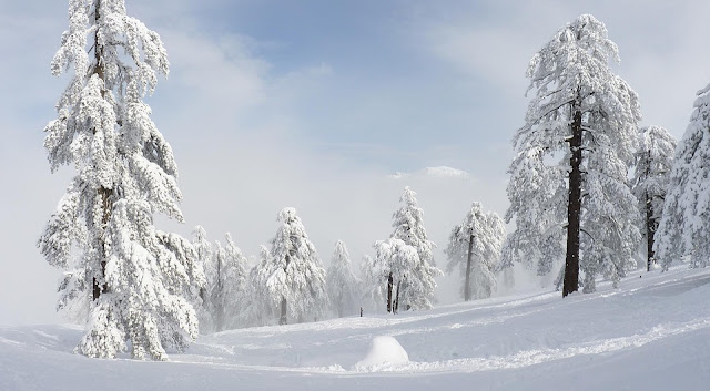 paysage-hiver-nature-froid
