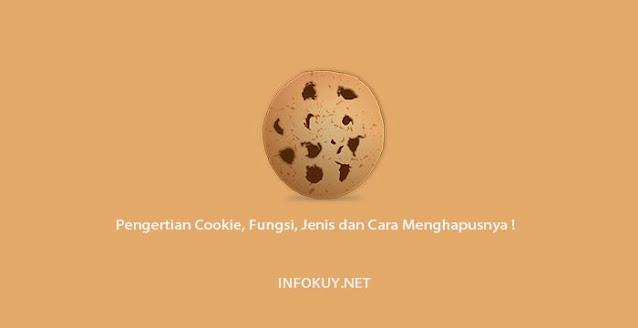 Pengertian Cookie, Fungsi, Jenis dan Cara Menghapusnya !