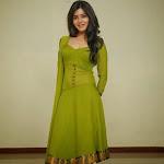 Samantha in green transparent punjabi dress