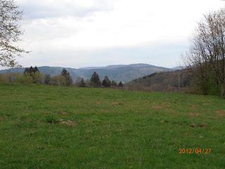 Panorama des pâtures à 700m d'altitude en montagne
