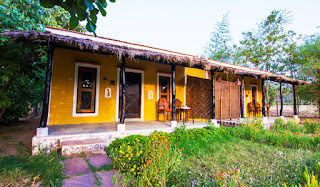 Explore the Wildlife of Madhya Pradesh with V Resorts