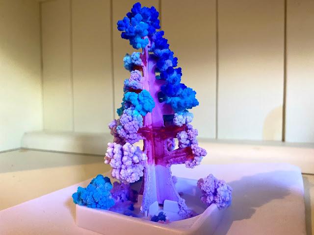 A fully grown crystal fir tree