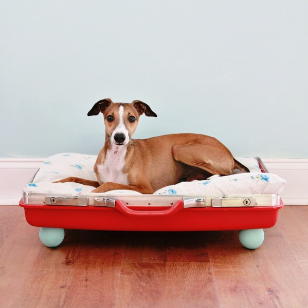 This DIY dog bed is made with one half of an old suitcase - a great way to repurpose!
