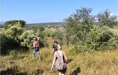 Carley Stenson volunteering in southern Africa