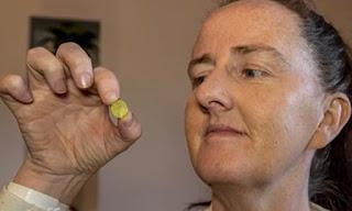 Mulher faz teste de COVID e descobre brinquedo preso no nariz há 37 anos