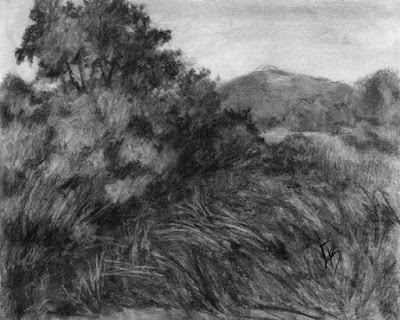 charcoal drawing black and white landscape nature