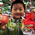 В одном из китайских городов запретили Рождество