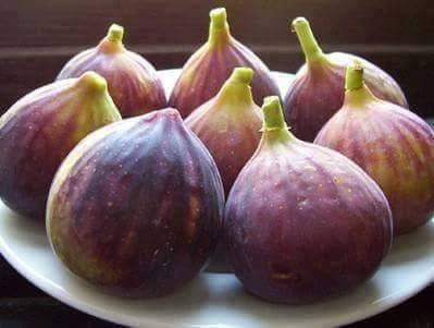 The benefits of figs
