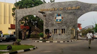 Top Undergraduate Scholarships applicable to Unical Students