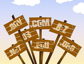 Perlukah Blogger Membeli Domain Berbayar?