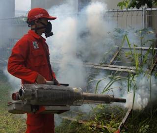 Jasa Fogging Surabaya 4 Fakta Fogging
