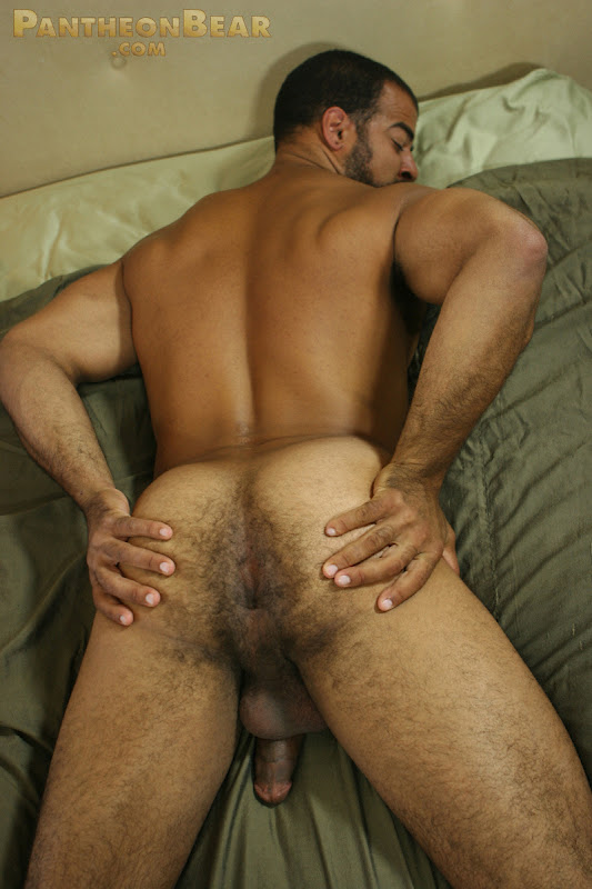 Muscle Bear Roman Wright Jerks Off - Hairy Guys In Gay Porn-9177
