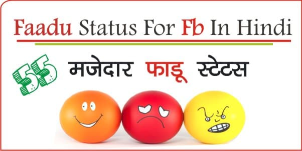 Faadu-Status-For-Fb-In-Hindi
