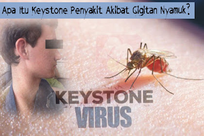 Apa Itu Keystone, Penyakit Akibat Gigitan Nyamuk?