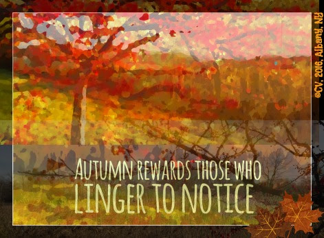 Linger Awhile in Autumn