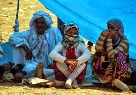 ISIL committed genocide against Yazidis