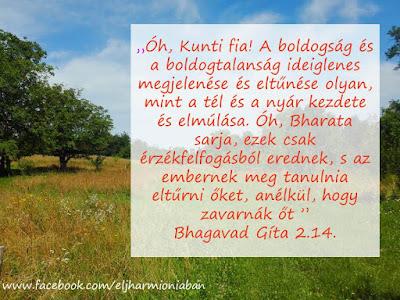 Bahgavad Gita, idézet, idézet, jóga, kiegyensúlyozottság, harmónia, boldogság, boldogtalanság