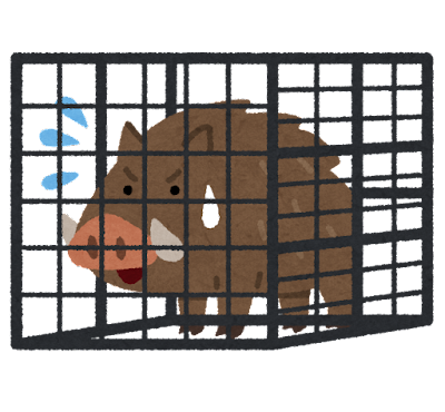 檻に捕まったイノシシのイラスト