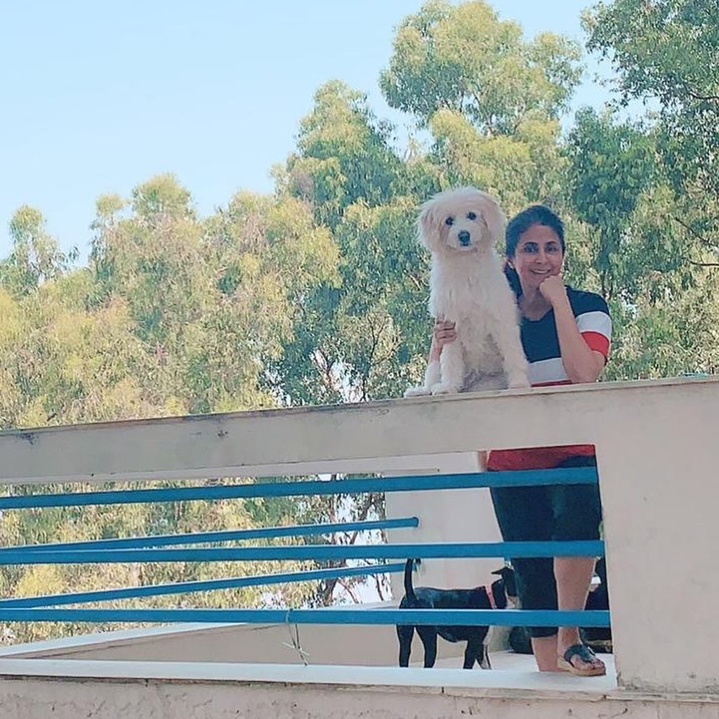 urmila-matondkar-shared-a-video-of-the-dog-bathing