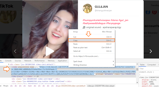 How To Save/Download TikTok Videos On Computer Without Third-Party Tool 2