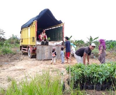 Sewa Truk Jakarta Samarinda Murah