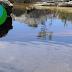 CONGRESSO - Os grandes problemas que ameaçam os sistemas de água doce vão ser debatidos em Coimbra