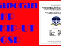 Contoh Laporan PKP PGSD UT
