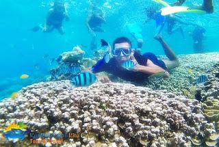 bawah laut karimunjawa