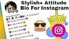 999+ BEST Instagram Bio For Girls | Stylish & Attitude Bio  [2021]