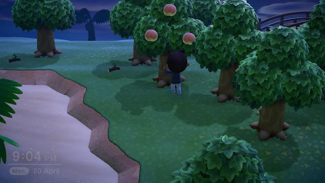 Ways of making money in Animal Crossing: New Horizons