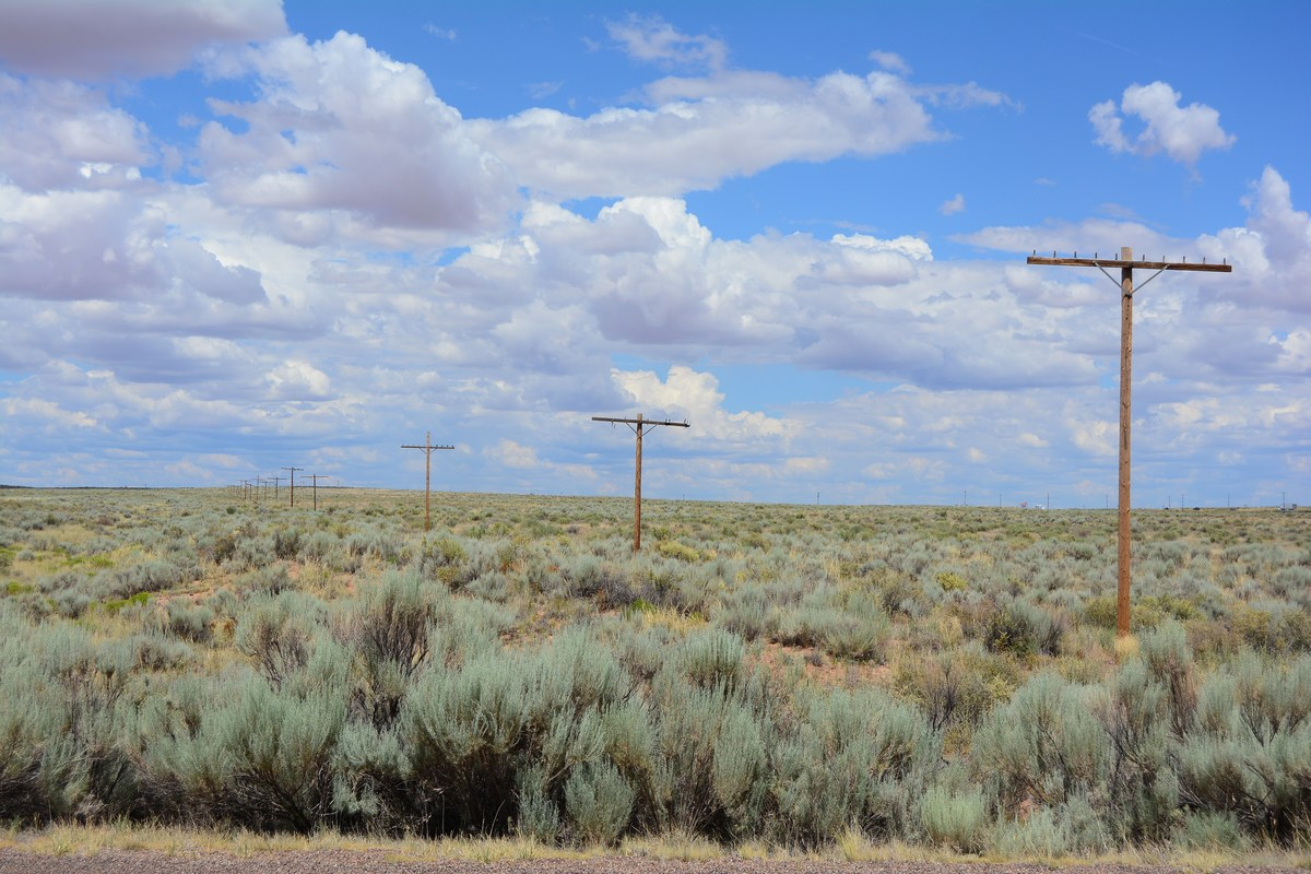 route 66 Petrified Forest