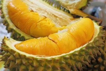 3 Jenis Durian asli Indonesia