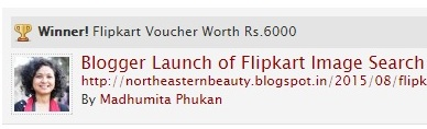 Winner for Blog post on Flipkart Image Search Functionality