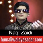 https://www.humaliwalyazadar.com/2019/03/naqi-zaidi-manqabat-2019.html