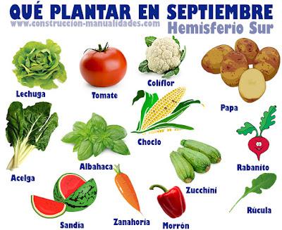 Qué plantar en Septiembre