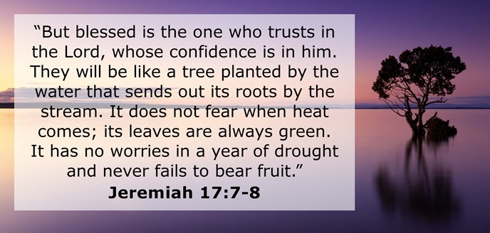 """""""But blessed is the one who trusts in the Lord, whose confidence is in him. They will be like a tree planted by the water that sends out its roots by the stream. It does not fear when heat comes; its leaves are always green. It has no worries in a year of drought and never fails to bear fruit."""""""