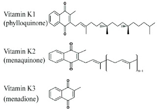 Structure of vitamin K