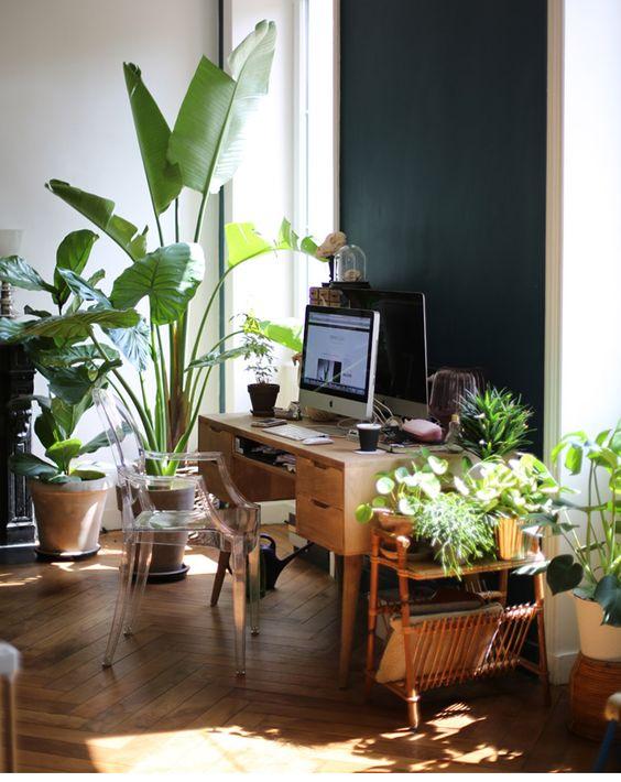 Escritorio con muchas plantas