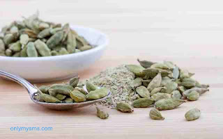 Cardamom and hot water benefits