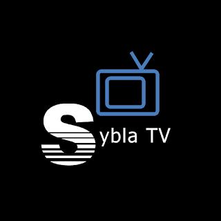 sybla tv gratuit pour samsung galaxy mini
