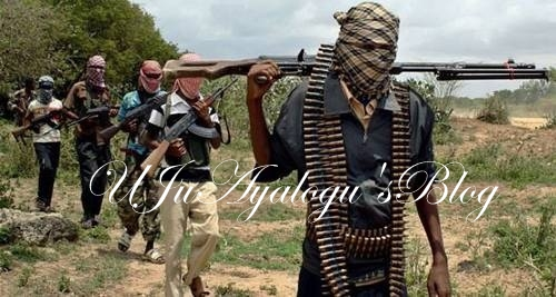 Boko Haram members 'relocating from Sambisa to Taraba forest'