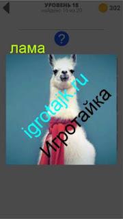 изображение ламы повязанной шарфом на шее 18 уровень 400 плюс слов 2