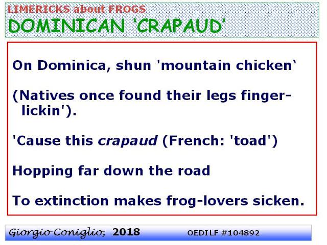 limerick; threatened species; 'crapaud'; French dialect; amphibians; frog (anuran); Leptodactylus fallaxDominica (Caribbean); web-photo; Giorgio Coniglio